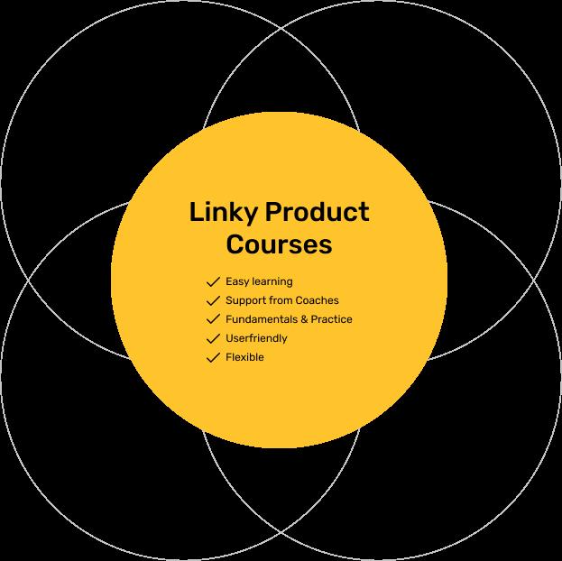 WhyLinkyProduct